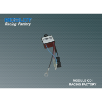 Module CDI Racing Factory