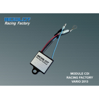 Module CDI Racing Factory Vario 2013