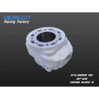 Cylindre Nu Racing Factory WR DERBI Euro3