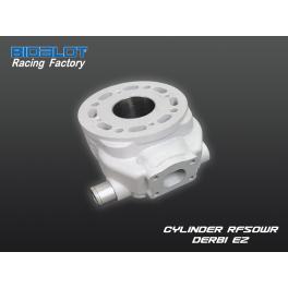 Cylindre Nu RF50WR DERBI E2